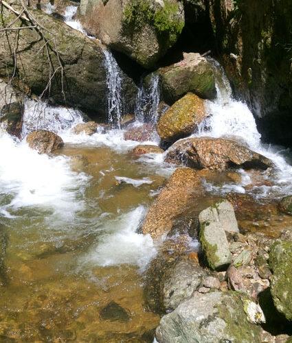 Wasserfall (Foto: L. Breitschopf)