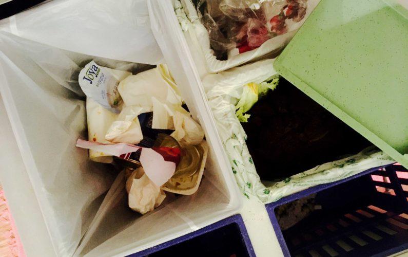 Mülltrennung - Foto (c) sam
